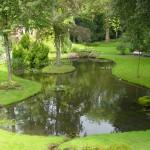 giardino-acqua3