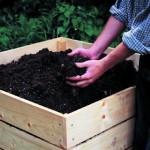 compost-organico