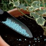 fertilizzanti-piante-giardino
